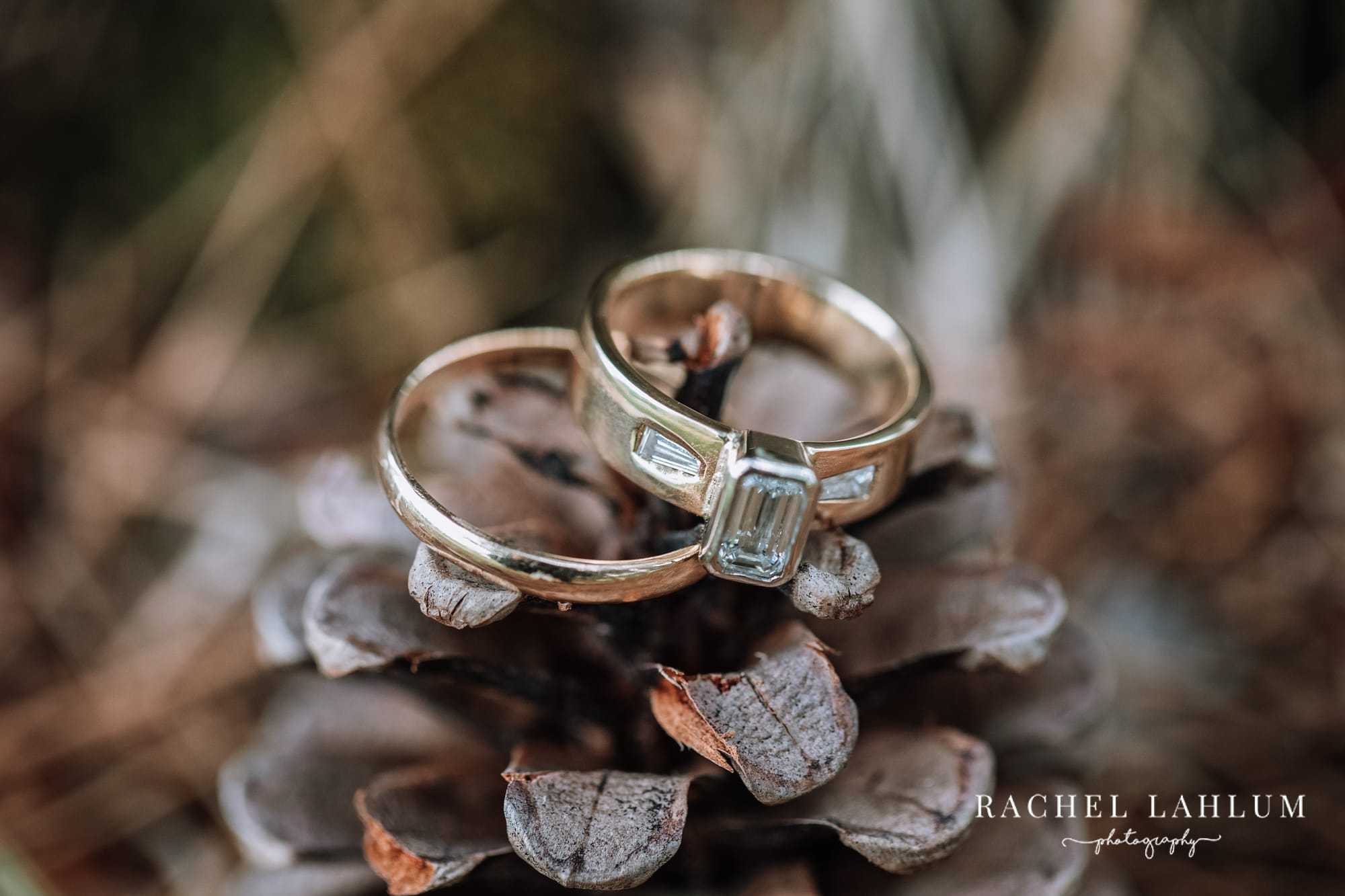 Wedding rings adorn a pine cone at Olivia and Miles outdoor wedding in Zimmerman, Minnesota.