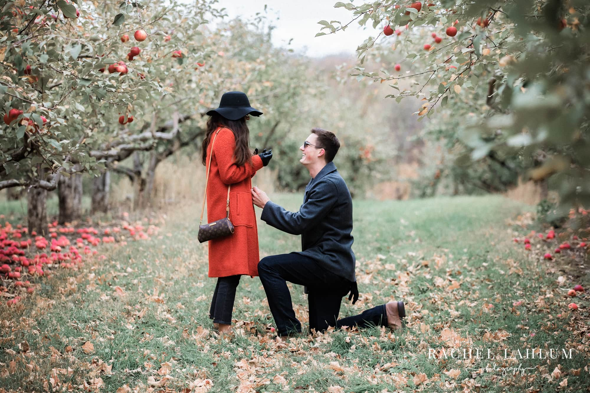 Man on one knee in apple orchard proposing to girlfriend.