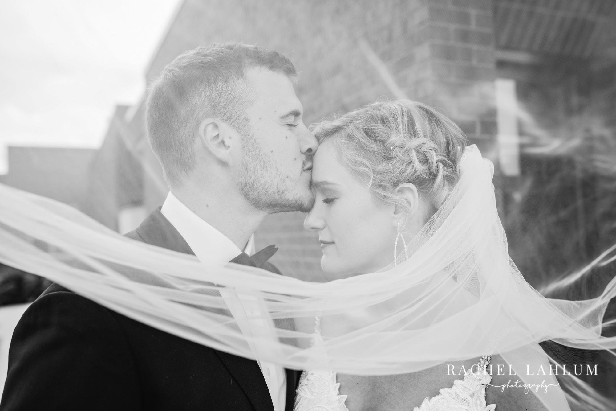 Portrait of groom kissing bride under veil at Golden Valley wedding in Minnesota.