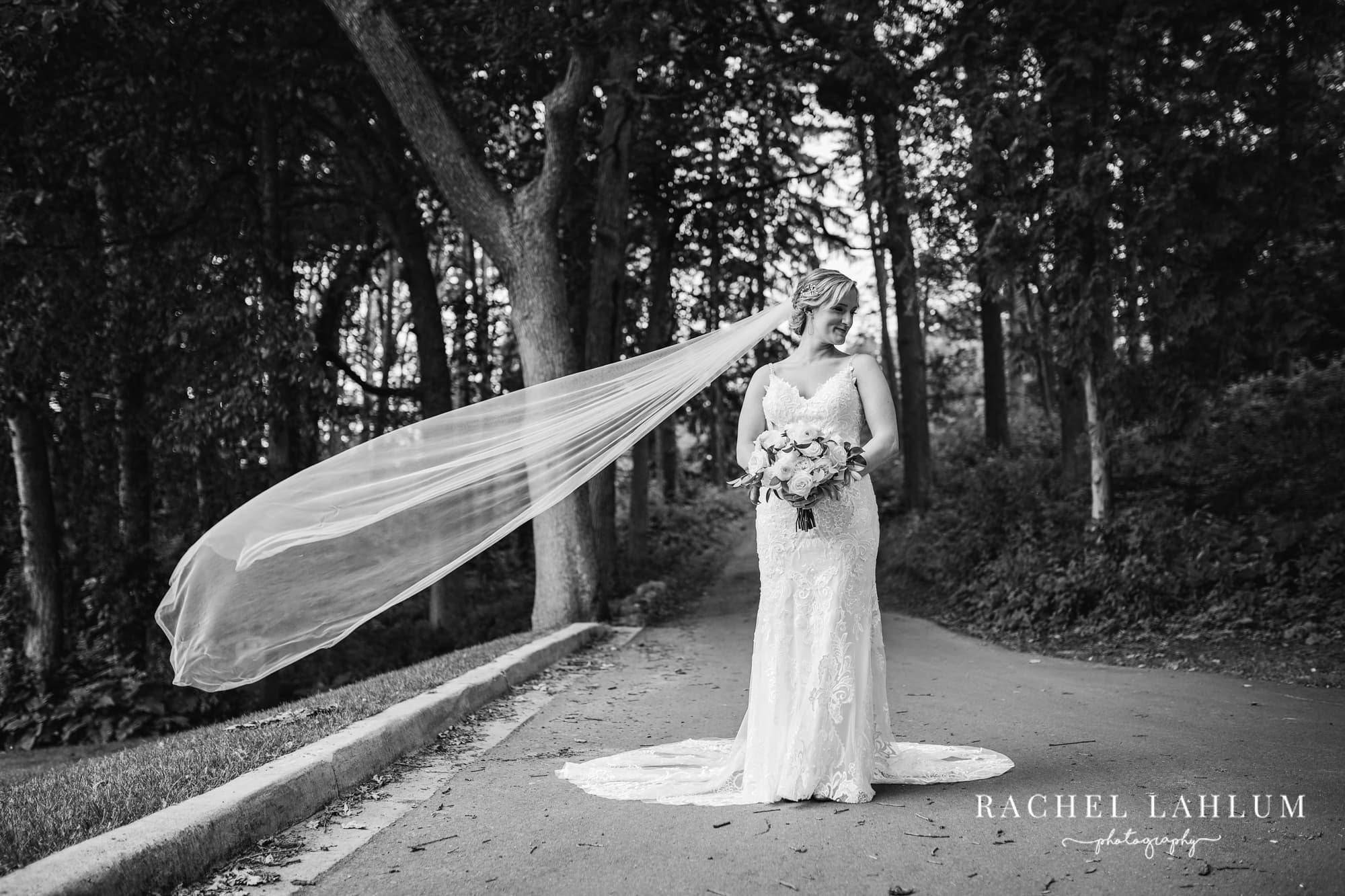 Photo of bride with veil flying in the wind at Golden Valley wedding.