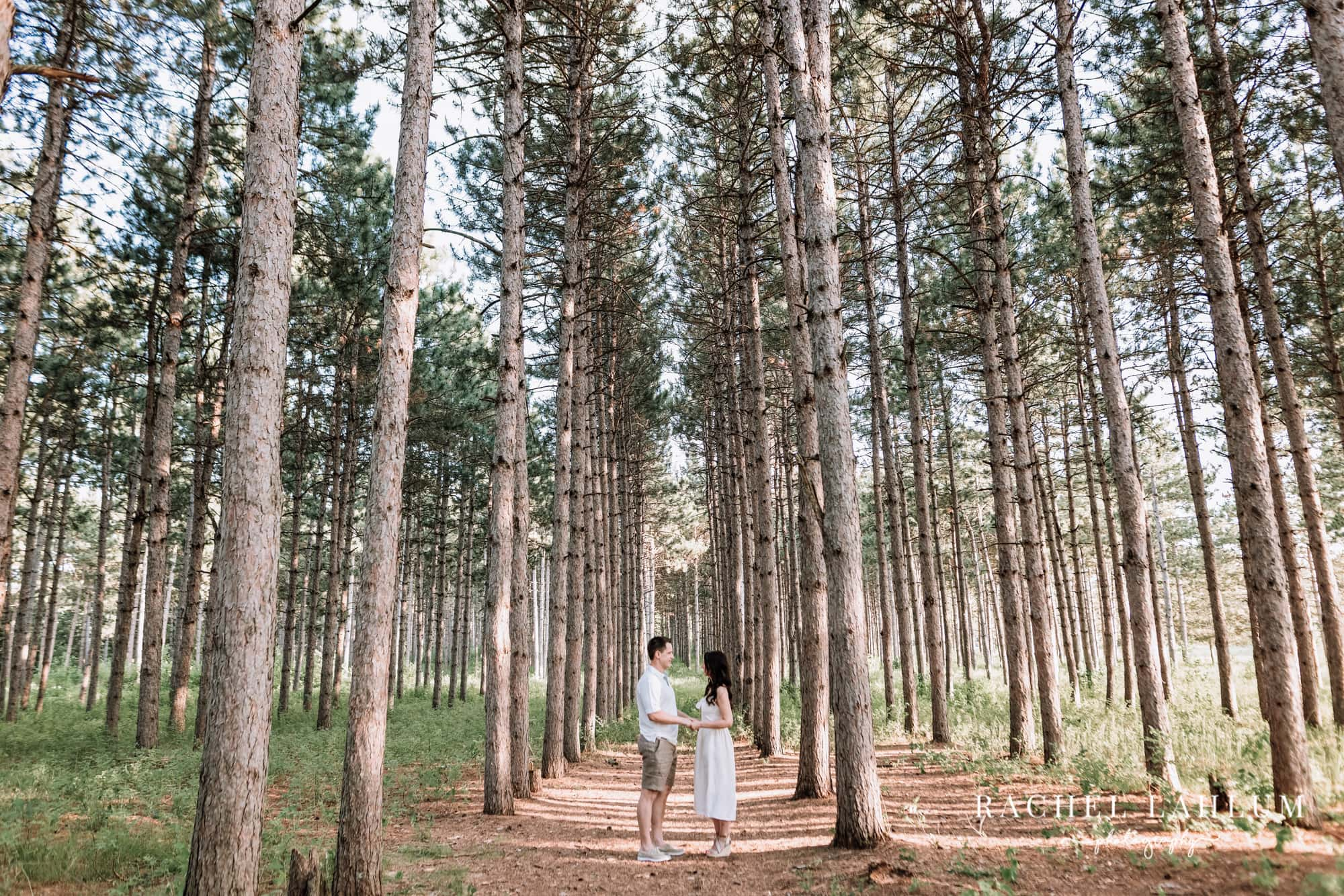Couple stand among pine trees fro engagement photography session at Montissippi Park.
