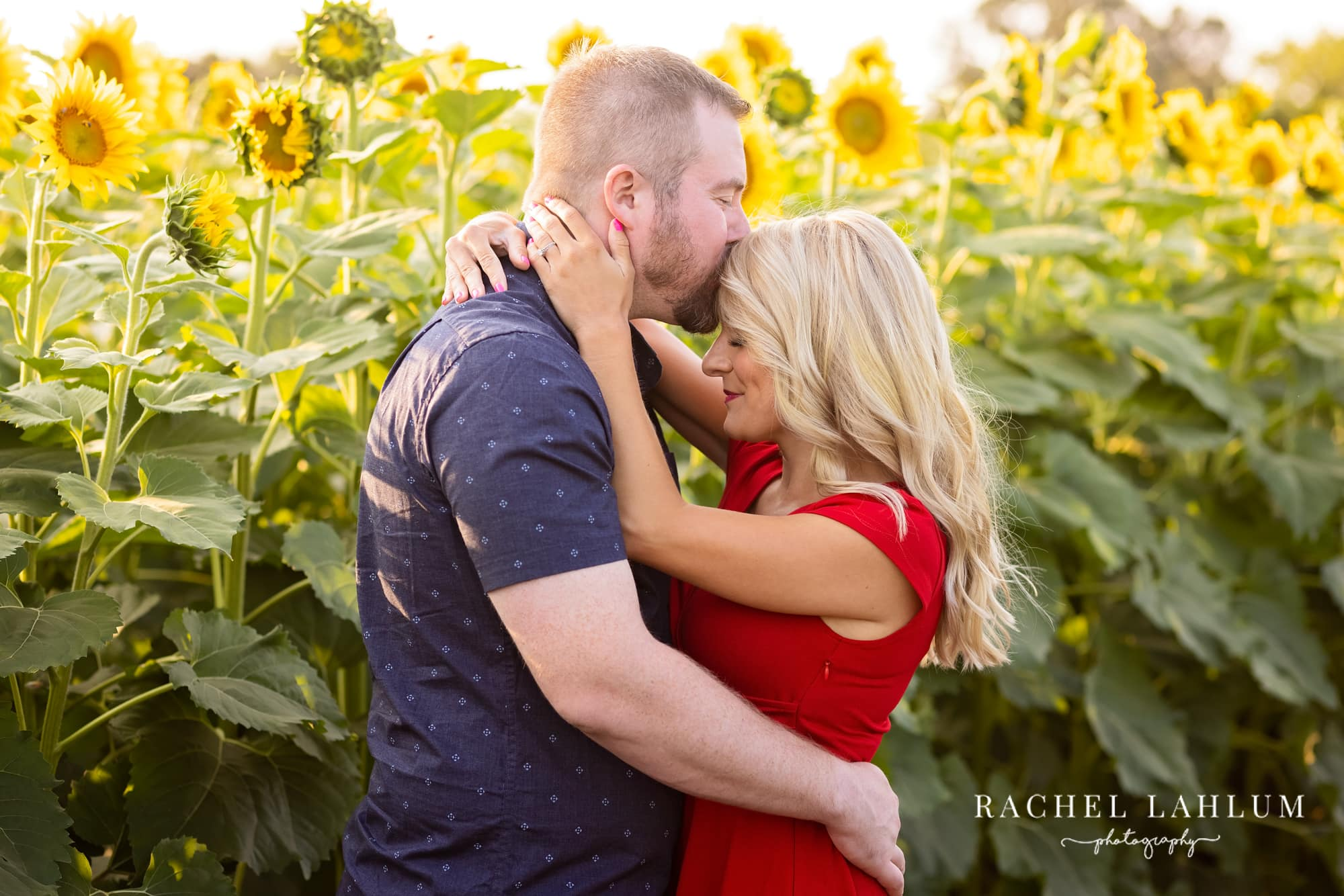 Laura and Kelly share a kiss among tall sunflower stalks in Isanti, Minnesota.